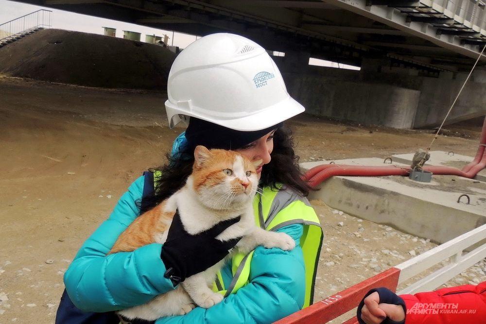 Живой символ Крымского моста - кот Мостик. 23 марта 2018 года.