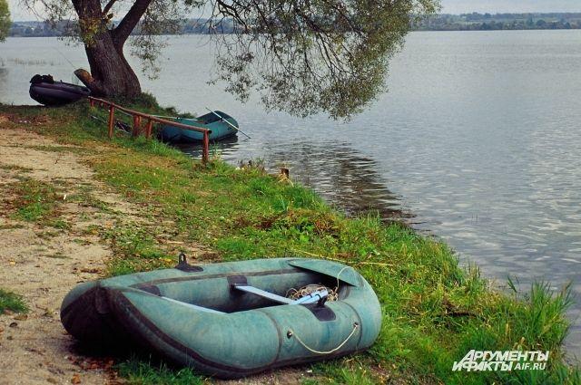 Калининградцев просят сообщать о водоемах с ярко-зеленой водой.