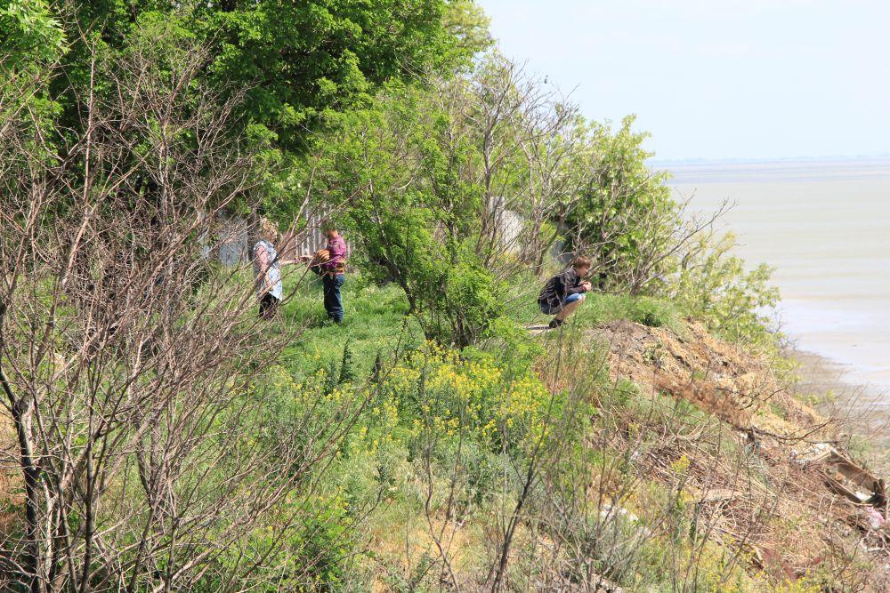 Сюда, в начало переулка Смирновского, приезжают многие таганрожцы провести досуг - полюбоваться на морскую гладь.