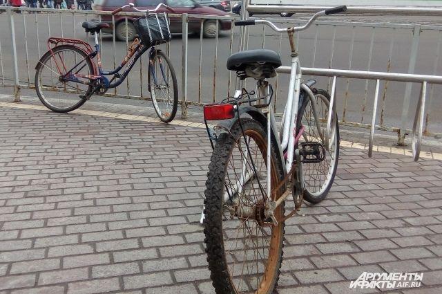 Калининградцам разрешат провезти велосипед в пригородных поездах бесплатно.