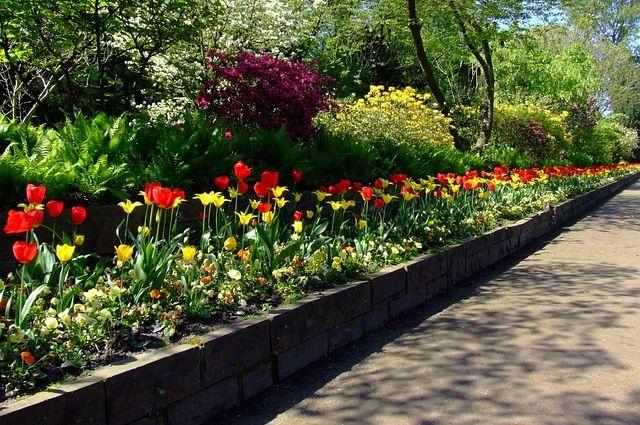 Оренбург в юбилейный год украсят более миллиона цветов.