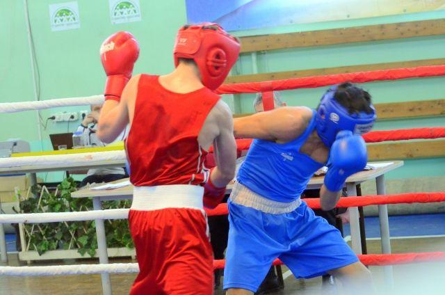На фестивале соберутся представители айкидо, каратэ, джиу-джитсу и бразильского джиу-джитсу, бокса, ММА, рукопашного боя и грэпплинга.
