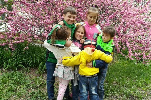 Дружная семья Илюхиных как цветы в саду.