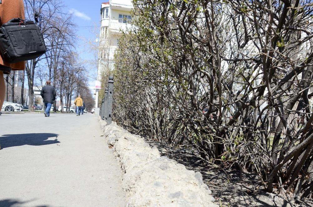 Сквер у гимназии №9.
