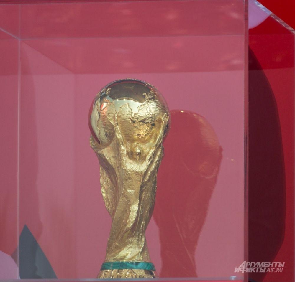 Он сделан из золота и представляет собой композицию из двух человеческих фигур, которые в поднятых руках держат земной шар. Прикасаться к кубку могут только победители турнира и главы государств. Оригинальный кубок не остается у спортсменов навсегда – команды-победители получают его позолоченную копию.