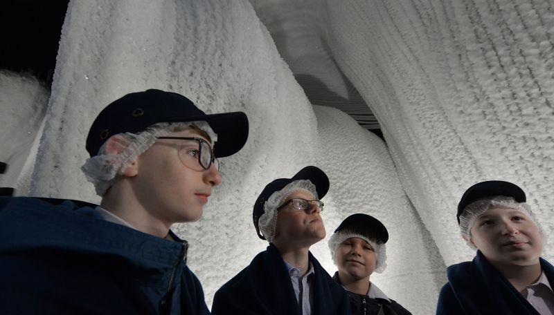 На медиаэкранах у входа будут транслировать документальные фильмы о природе льда и научных экспедициях в Арктику и Антарктику.