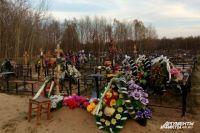 С территории омских кладбищ уберут аварийные деревья.