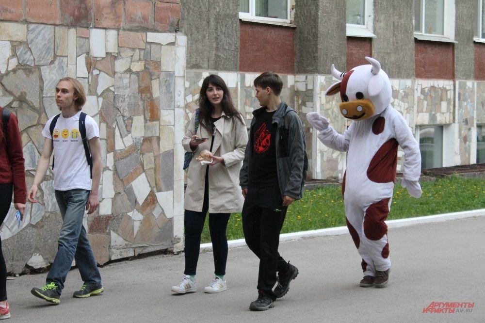 Бык среди студентов