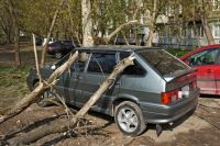 Происшествие произошло около дома по адресу улица Петропавловская, 64.