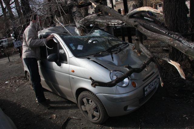 В Тюмени коммунальщики убирали последствия урагана