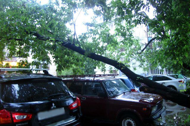 Сергей Сарычев поручил оперативно ликвидировать последствия урагана