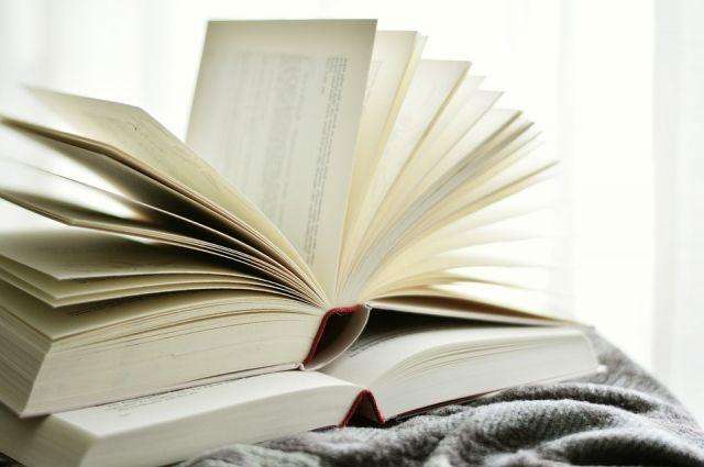 На сегодняшний день на территории округа действуют более 30-ти удаленных электронных читальных залов доступа к ресурсам Президентской  библиотеки.