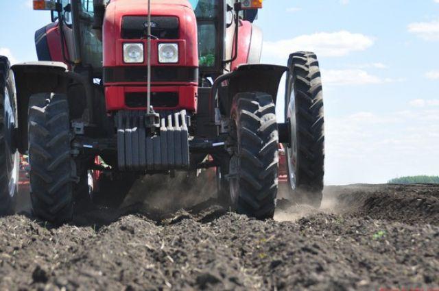 Общая площадь посевов в регионе составила почти 2 млн гектаров.