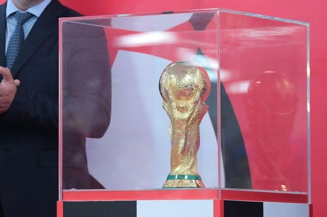 ВРостов доставили кубок чемпионата мира пофутболу