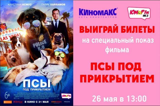 В Тюмени пройдет спецпоказ фильма «Псы под прикрытием / Show Dogs»