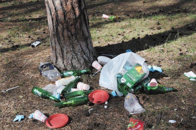 Бор очистят от мусора.