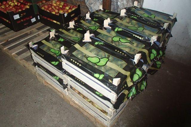 В ходе проверки обнаружили 50 ящиков яблок общим весом 650  килограммов и 20 ящиков груш (общий вес 240 килограммов).
