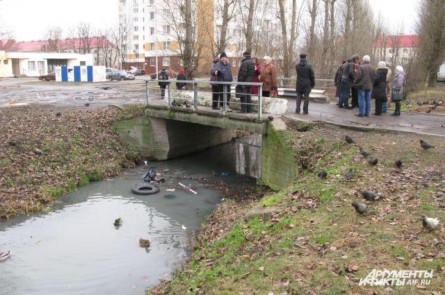 Жители ул. Дзержинского с 2003 г. бьются за чистоту реки.