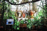 """Работа """"Репортаж из XXI века"""" переносит зрителей в высокотехнологичные джунгли."""