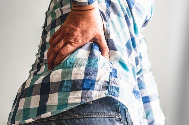Лекарственные растения спины, суставов ютуб артроз и артрит коленного сустава