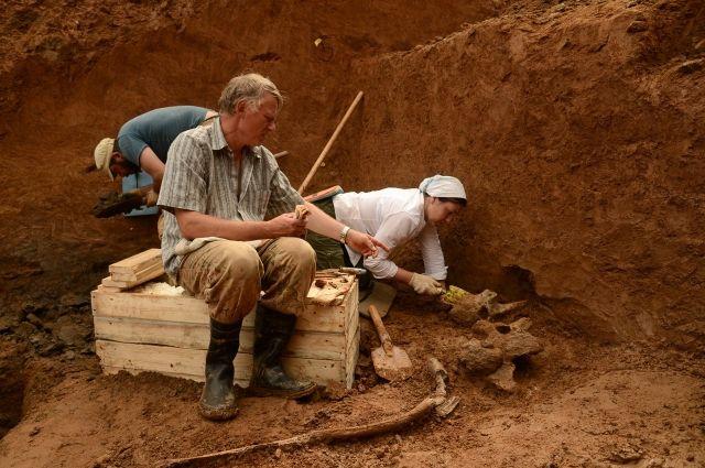 Палеонтологи на раскопках трогонтериевого слона
