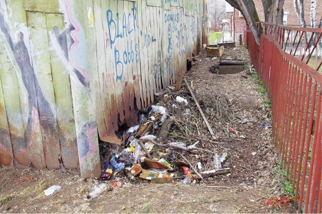 В Тюмени сбором и переработкой мусора будет заниматься одна компания