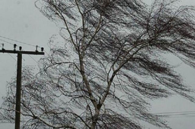 В Оренбуржье ожидается сильный ветер и понижение температуры воздуха.