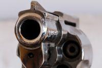 У ранее судимого новосибирца при себе был револьвер