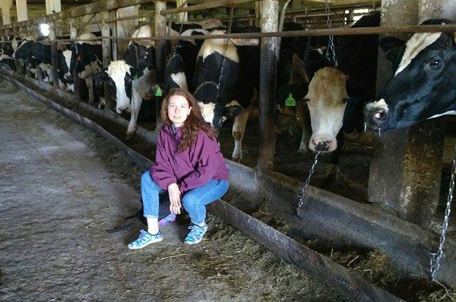 Кире нравится работать с сельскохозяйственными животными.