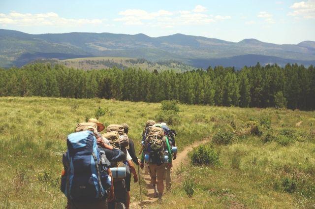 По течению и по лесным тропам отправятся туристы.