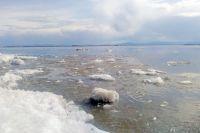 Лед тронулся, до Салехарда осталось почти 50 километров