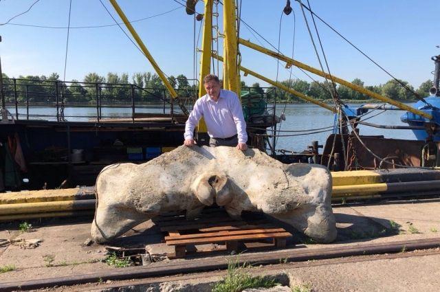 В Балтийском море рыбаки нашли останки кита.