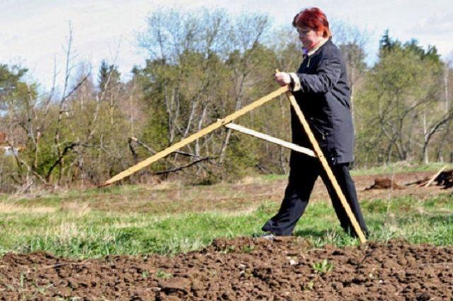 Многодетным семьям Ульяновска раздали 213 земельных участков