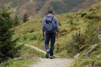 Собираясь в лес даже на несколько часов, нужно всегда помнить, что обстоятельства могут резко измениться.
