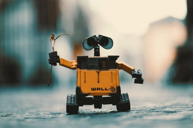 Юные ямальцы учатся программировать роботов