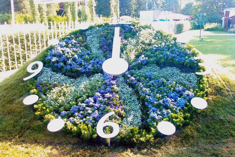 Еще одни цветочные часы. На этот раз в Юрмале (Латвия). Кстати, в 17 веке впервые натуралист Карл Линней высадил цветы на круглой клумбе, расположив их по времени раскрытия и закрытия.