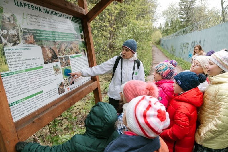 В первый день работы лагеря юные экологи отправились в лес.