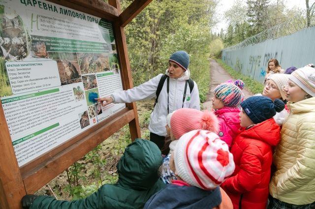Участники лагеря побывали на экотропе «Липовая гора».