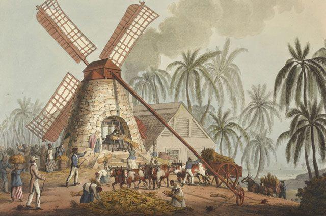 Сахарная плантация в британской колонии Антигуа, 1823 г.
