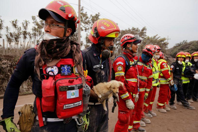 Спасатели в пострадавшем от извержения вулкана городе Эскуинтле.
