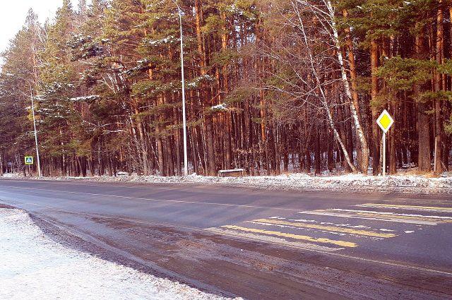 Новая дорога в объезд Надыма сократит путь и предотвратит подтопление