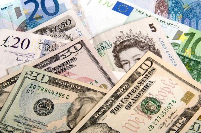 В Нацбанке рассказали, какую валюту чаще всего подделывают в Украине