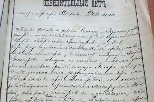Обвинительный акт по делу врача Григория Фейгина.