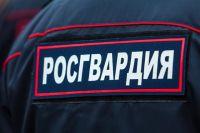 Оперативные действия росгвардейцев помогли вернуть украденное имущество.