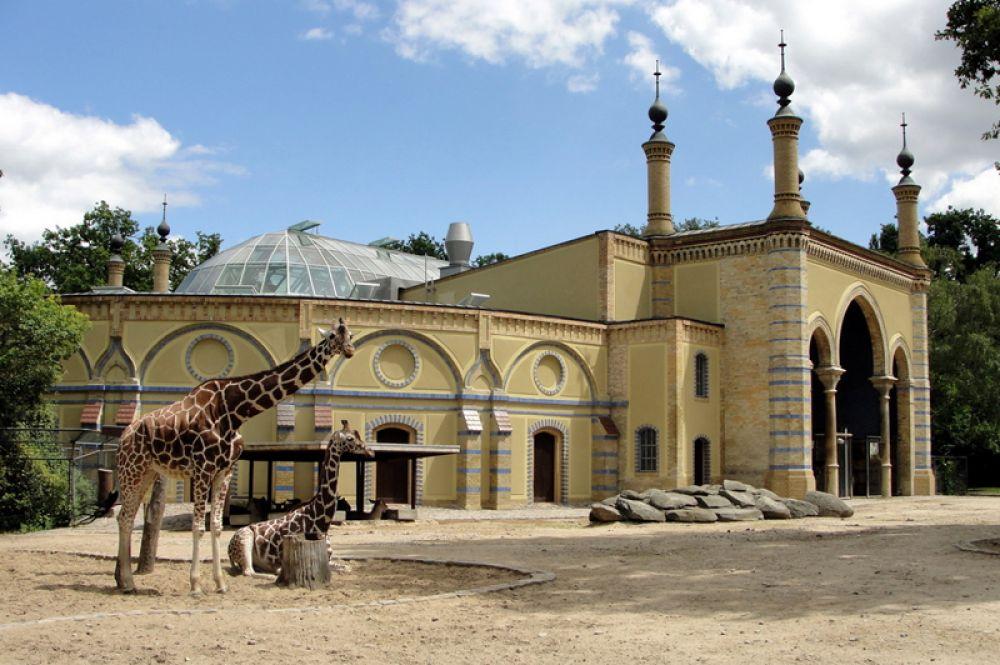 Берлинский зоопарк в районе Тиргартен является одним из самых больших зоопарков Германии. Здесь представлено такое около 15 тысяч видов животных 1500 видов. К зоопарку примыкает аквариум, на трех этажах которого представлены не только рыбы, но и рептилии, амфибии, насекомые и беспозвоночные.
