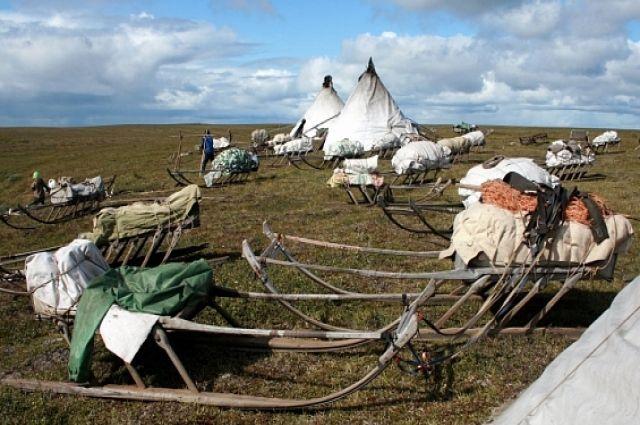 На Ямале стартовали летние научные экспедиции