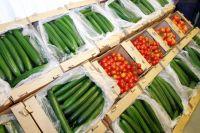 В Украине лишь семь хозяйств выращивают овощи без пестицидов на продажу
