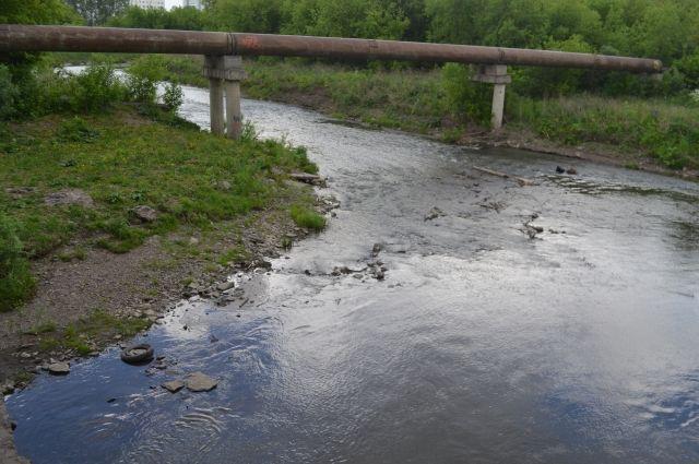 В областном центре активисты очистили берега водоемов.