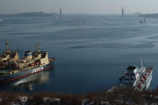Слева - ледокол «Адмирал Макаров» (декабрь 2010 г.)