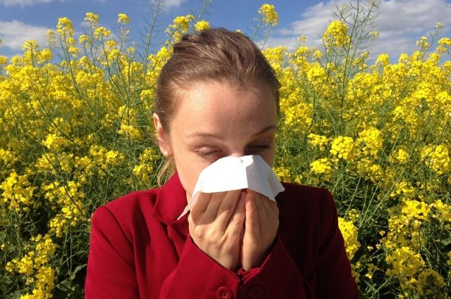 Симптомы летней аллергии чаще обусловлены повышенной чувствительностью к пыльцевым аллергенам.